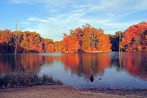 alum-creek-landscape-angela-murdock