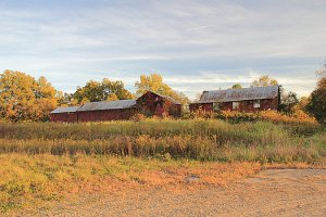 red-barn-on-a-fall-day-angela-murdock