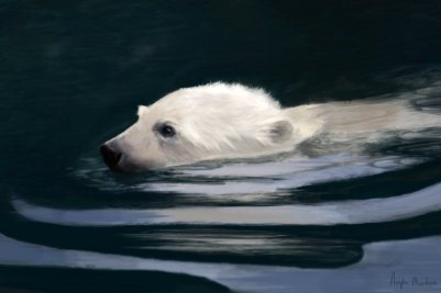 young polar bear swimming digital painting by angela murdock