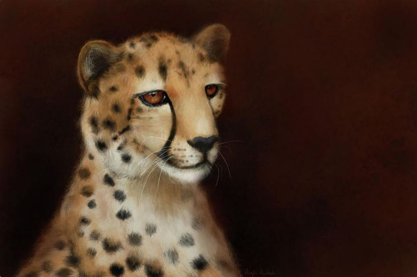 cheetah eyes digital painting artwork by angela murdock