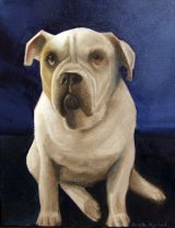 boss pet portrait painting by angela murdock