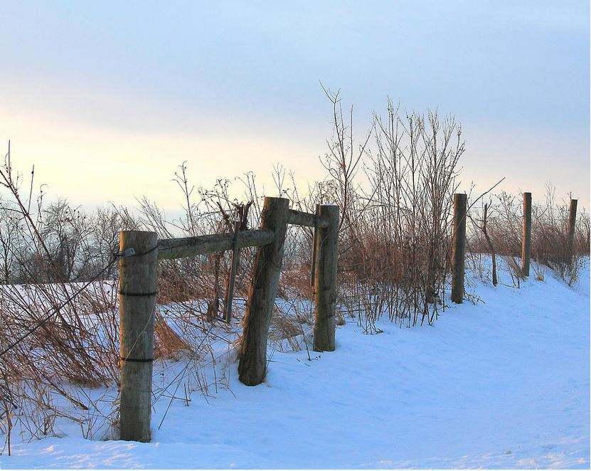 fence-in-the-snow landscape prints by Angela Murdock