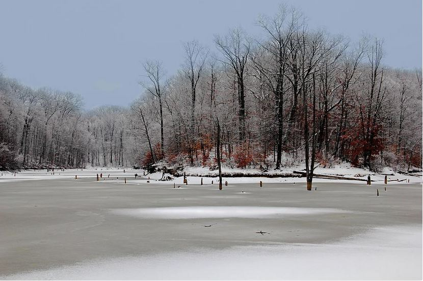 winter-at-alum-creek - photography prints by Angela Murdock