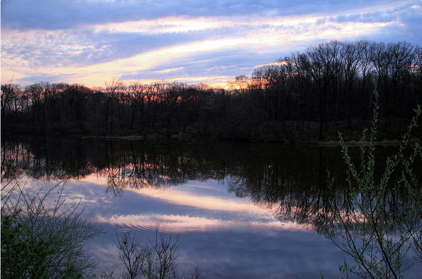 Early Spring Morning Photography by Angela Murdock