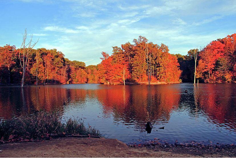 Alum Creek Landscape: Fine Art Photography by Angela Murdock
