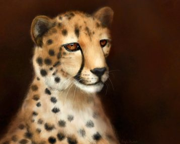Cheetah Eyes: Art by Angela Murdock