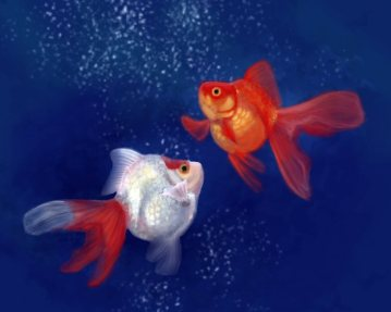 Goldfish: by Angela Murdock