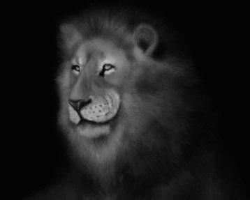 Lion Art by Angela Murdock