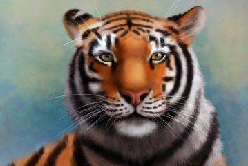 Tiger art by Angela Murdock