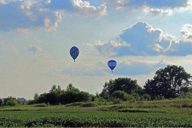 blue balloons over a field