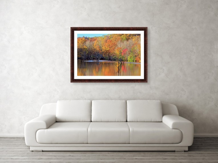 autumn reflections framed
