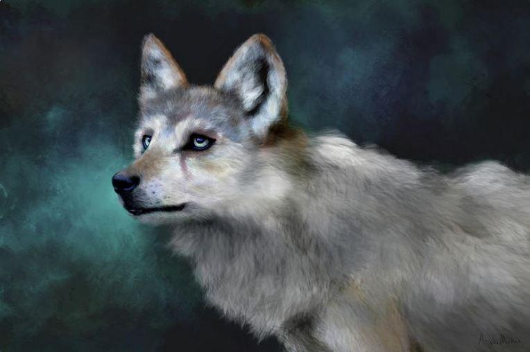 Wolf Art: Artwork by Angela Murdock