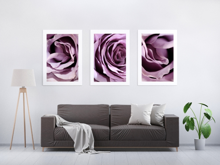 purple rose abstract display